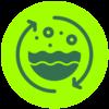 OP Isola verde_insalate 4 gamma
